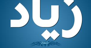 صوره معنى اسم زياد , اجمل اسم ولد زياد