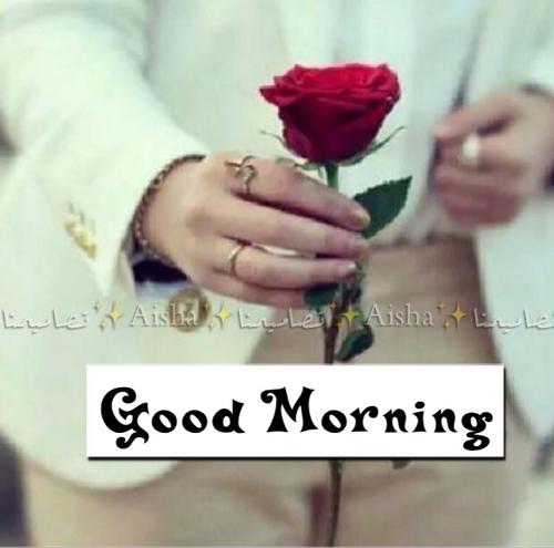 بالصور صباح رومانسي , اجمل الصور الرومنسيه الصباحيه 2698 4