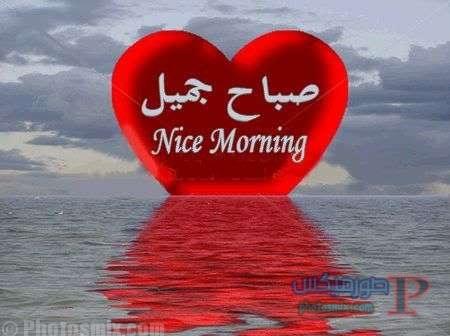 بالصور صباح رومانسي , اجمل الصور الرومنسيه الصباحيه 2698 8