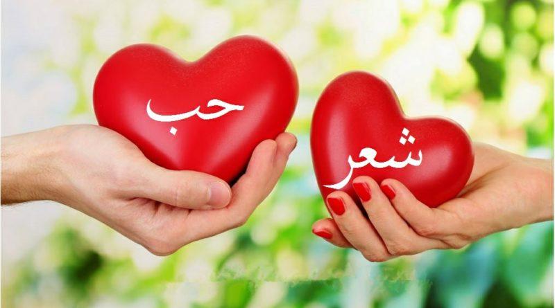 بالصور شعر الحب , اجمل شعر رومانسى للاحباب 5839 4