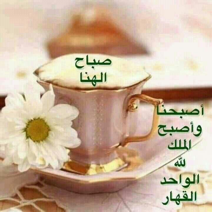 بالصور صور صباح الخير حبيبي , احلى مسجات صباح للحبيبة 5842 6