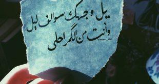 صوره عبارات حب وعشق , كلام جميل فى الحب والغرام