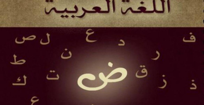 بالصور صور عن اللغة العربية , صور معبره عن اللغه العربية افصح اللغات 6024 11
