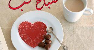 بالصور صباح الحب حبيبتي , احلى صباح للحلوين الغاليين 6029 13 310x165