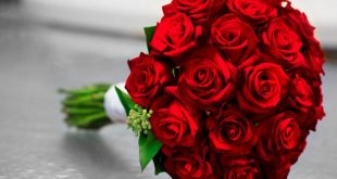 صوره صور الورد , اجمل باقات ورود هدية للاحباب