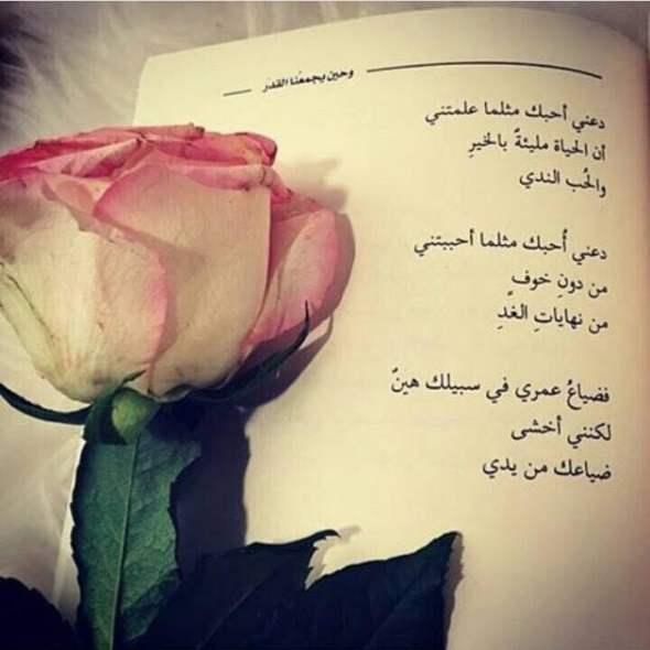 بالصور عبارات عن الورد , احلى كلام عن الورد 6101 2