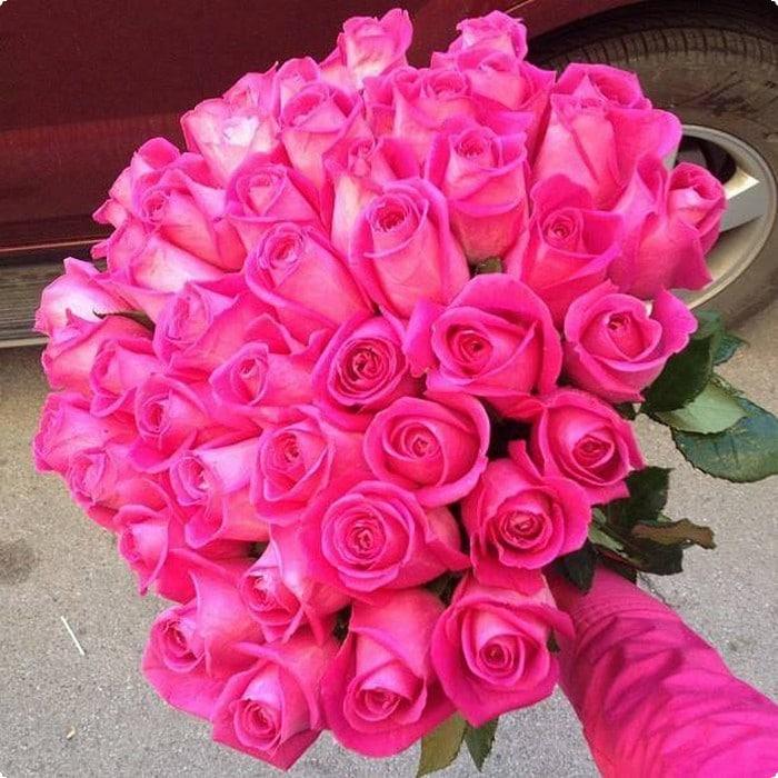 بالصور عبارات عن الورد , احلى كلام عن الورد 6101 8