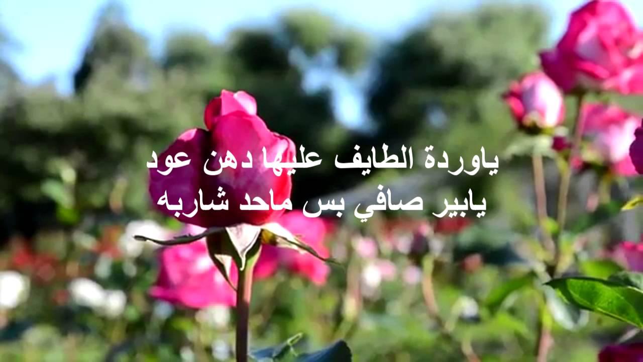 صوره عبارات عن الورد , احلى كلام عن الورد