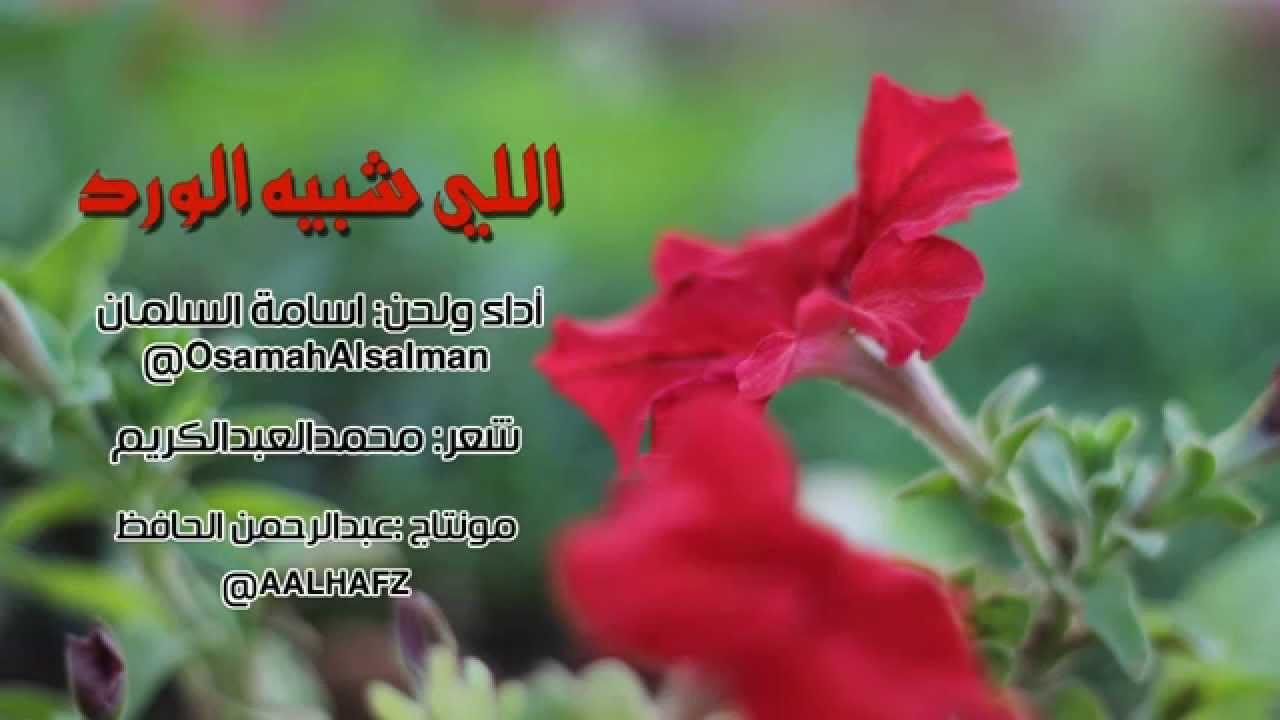 كلام جميل عن الورد بالانجليزي