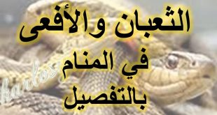 بالصور تفسير حلم الثعابين في البيت , هل حلمت بثعبان فى المنام؟شاهد معنا اروع التفاسير 6150 3 310x165