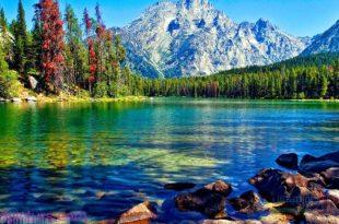 بالصور صور خلفيات تلفون , احلى صور خلفيات بجوده عاليه للجوال 6155 13 310x205