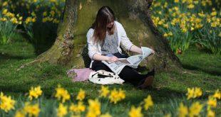 صوره صور فصل الربيع , اجمل صور للطبيعه الخضراء فى فصل النماء