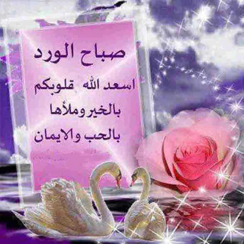 صورة كلام عن صباح الخير , استخدامات كثيرة ومتنوعه للصباح 6248 14