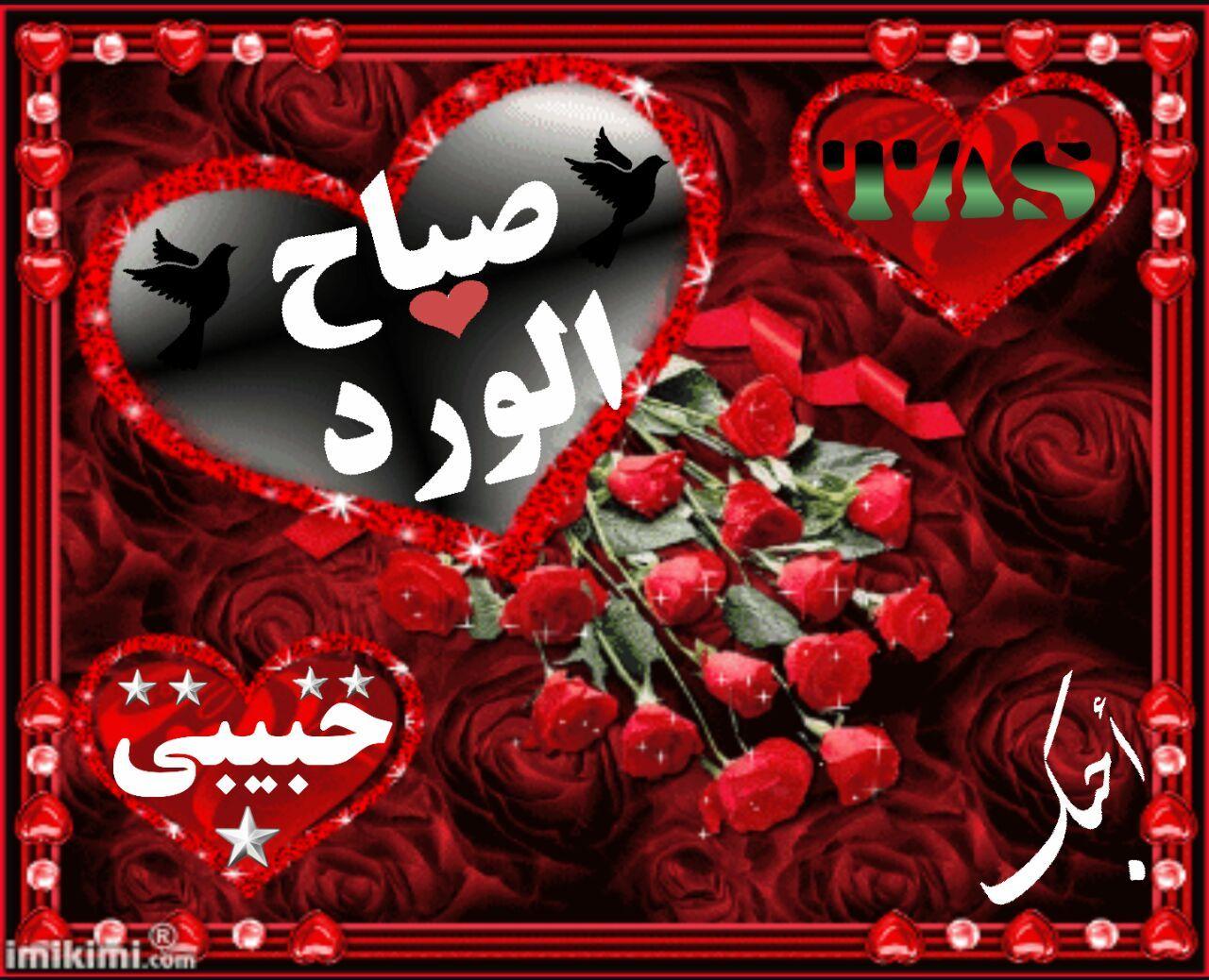 بالصور صباح الورد حبيبتي , اجمل تشكيله صور صباح الورد حبيبتي 4258 12