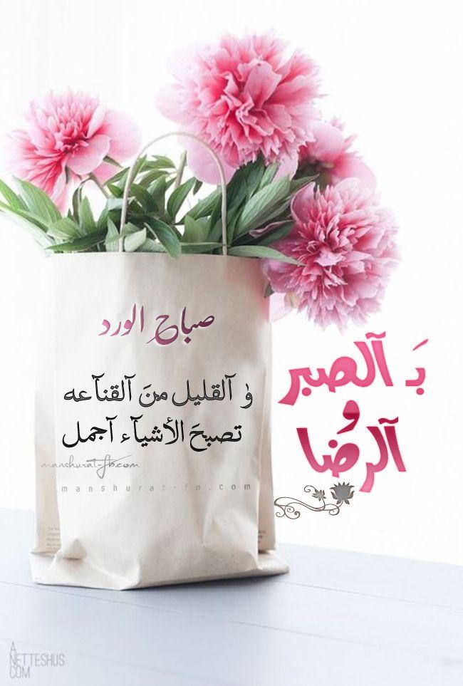 بالصور صباح الورد حبيبتي , اجمل تشكيله صور صباح الورد حبيبتي 4258 7