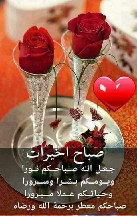 بالصور صباح الورد حبيبتي , اجمل تشكيله صور صباح الورد حبيبتي 4258 9