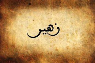 صور معنى اسم زهير