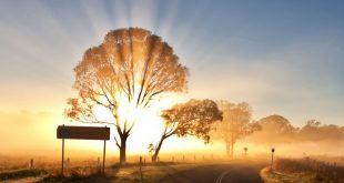 بالصور تفسير غروب الشمس في المنام 10569 2 310x165