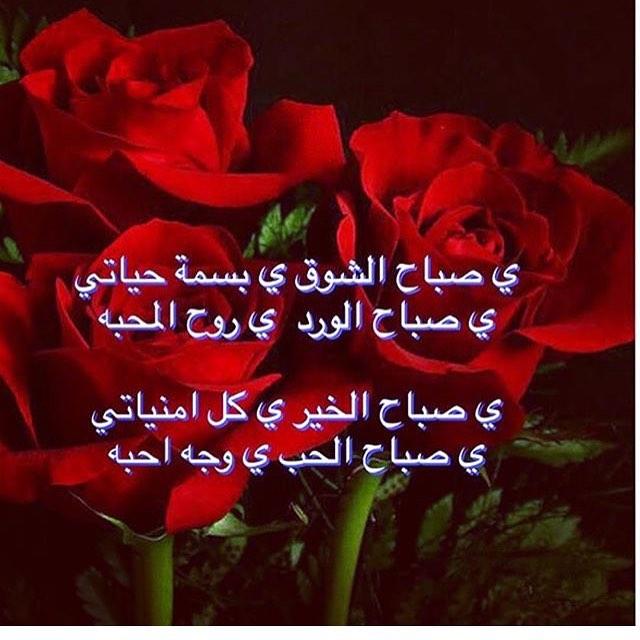بالصور كلمات صباحية رومانسية , اسعد من تحب بكلمات رقيقه وناعمه 11397 13