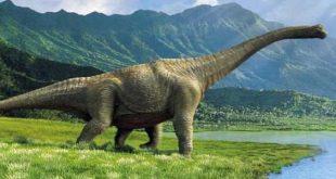صور معلومات عن الديناصورات , حياه الديناصور