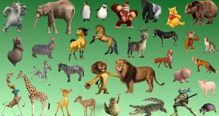 بالصور معلومات عن الحيوانات , نبذه عن الحيوانات 4392 2 310x165