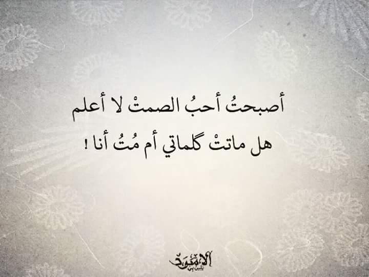 بالصور كلام فراق وعتاب , فارق طالما انت عنده مش فارق 5110 7