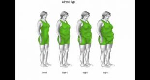 بالصور رجيم لحرق الدهون وليس العضلات , ابسط انواع الرجيم 10395 2 310x165