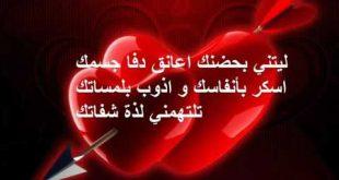 بالصور كلام في الحب للحبيب , عبارات رقيقة عن الحب 1726 12 310x165