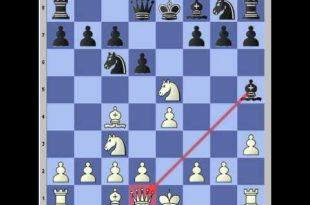 بالصور كيف تلعب الشطرنج , ابسط الطرق للعب الشطرنج 2196 2 310x205
