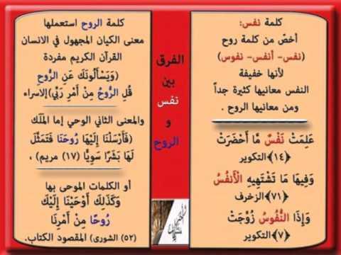 بالصور معاني الكلمات عربي عربي , اروع الكلمات ومعناها 3588 3