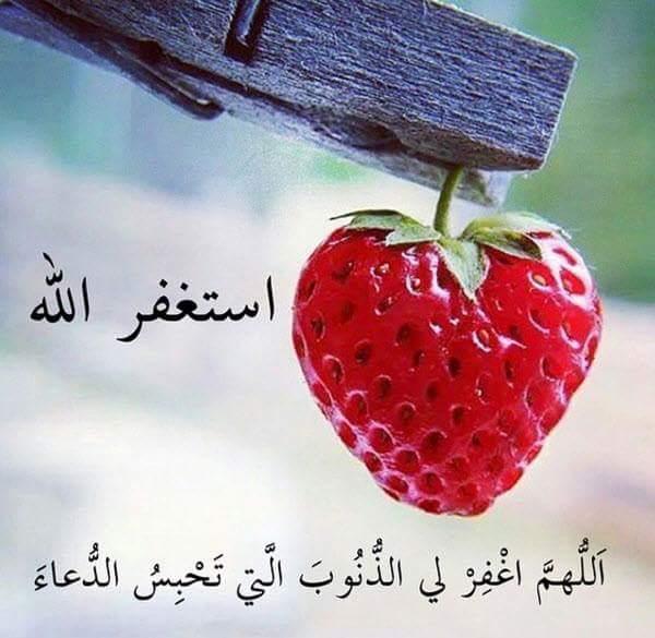 صور صور دينيه حلوه , خلفيات اسلاميه جديده