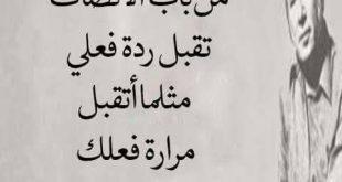 بالصور عبارات زعل وعتاب , افضل الكلمات عن الزعل والعتاب 5146 11 310x165