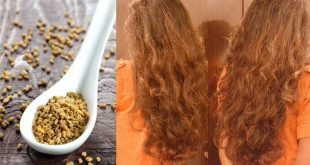 صور الحلبة لتطويل الشعر , اسرع وصفة تقوم بتطويل شعرك