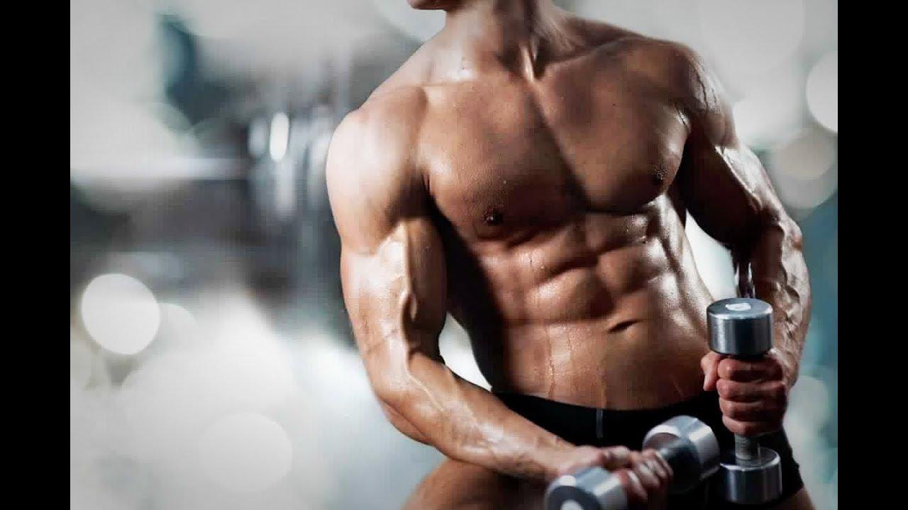صورة كم عدد عضلات جسم الانسان , كم تبلغ عضلات الجسد البشرى من عدد