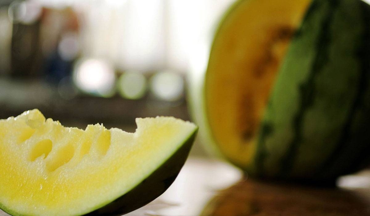 صور بطيخ اصفر , معلومات وفوائد عن البطيخ الاصفر