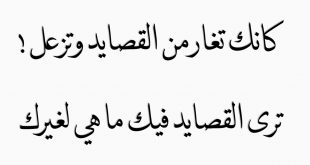 صورة كلام غزل فاحش , عبارات وجمل تغزل فى الحبيبه