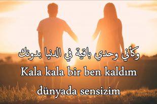صورة كلمات تركية رومانسية , جمل عاطفيه كلها حب بالتركي