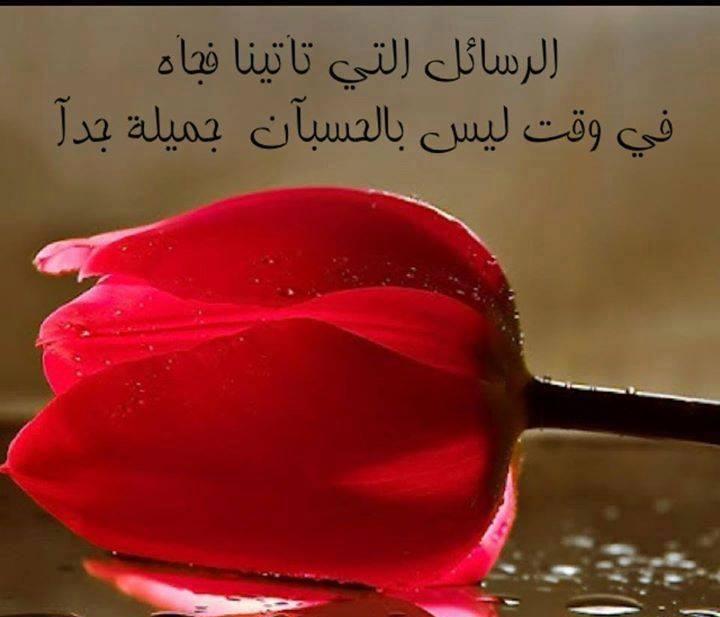 صورة كلمات من ورود , اروع الجمل بخلفيه زهور 5305 3