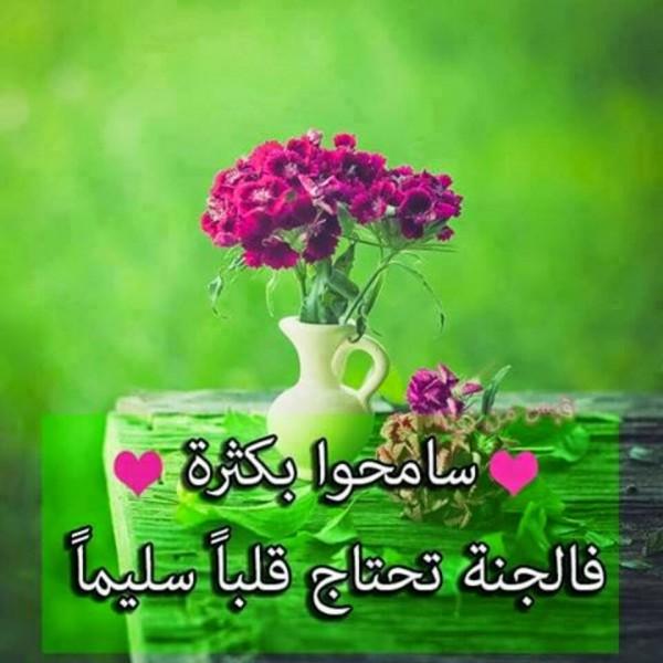 صورة كلمات من ورود , اروع الجمل بخلفيه زهور 5305 6