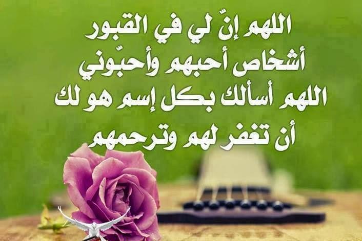 صورة كلمات من ورود , اروع الجمل بخلفيه زهور 5305 7