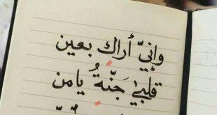 صورة رسائل حب خاصة للحبيب , مسجات عشق للاحبه