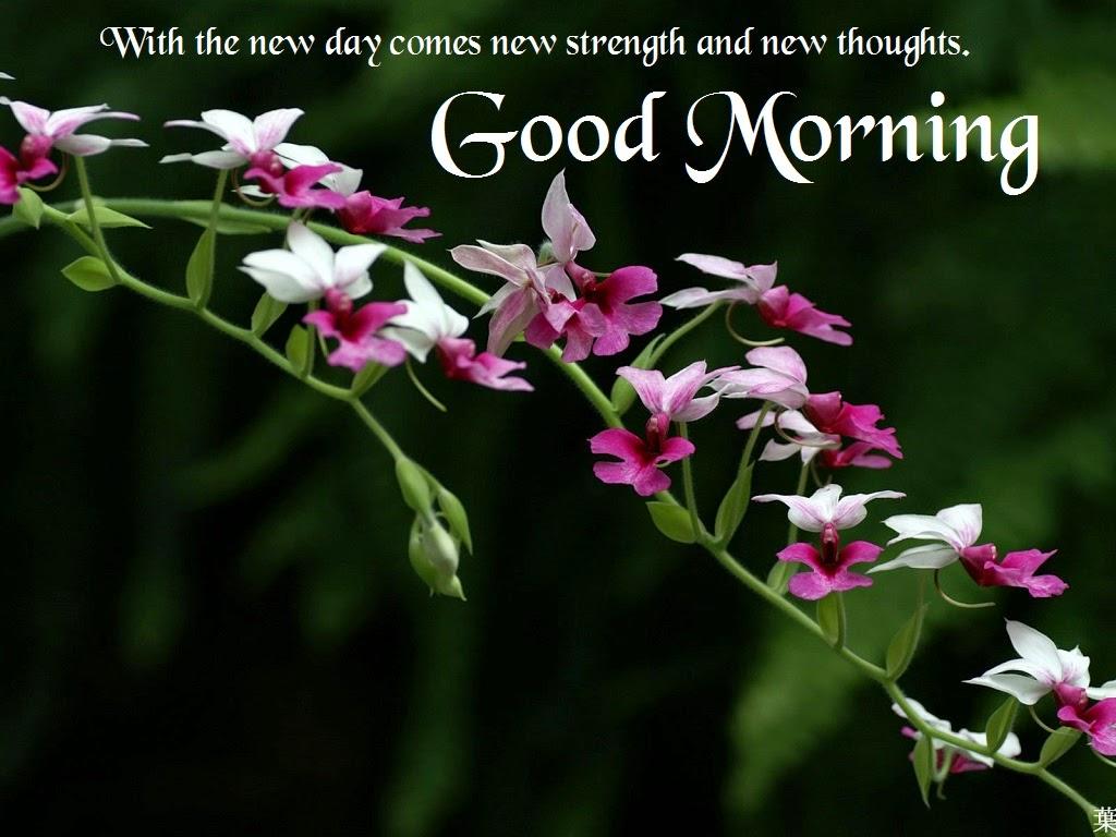 صورة صور صباحيه جميله , احلى كروت للصباح 6351 3