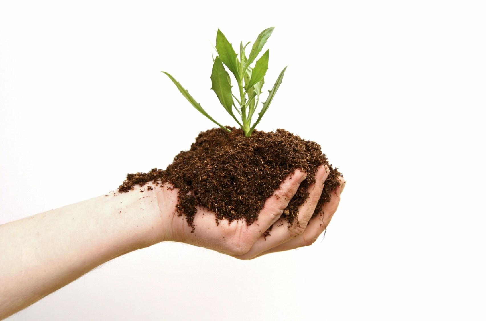 صورة مكونات التربة , مما تتكون التربه